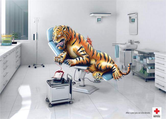 Tigre tatu